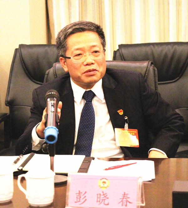 彭晓春参加政协民主党派无党派人士界讨论政府工作报告