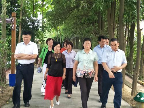 市政协调研组到田阳县聚之乐休闲农业有限公司调研
