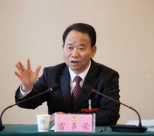 雷多荣参加文新体广电界、特邀人士(政法系统等)界分组讨论